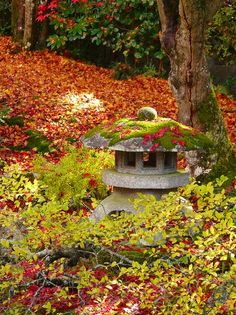 泉涌寺:庭園の雪見灯籠