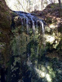Falling Waters State Park Waterfall Florida