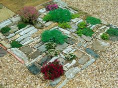 Combination of mismatched pavers and gravel with varied small plants results in unexpectedly lovely little garden vignette.