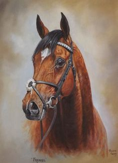 Yorkshire based Philippa is an award winning member of the Society of Equestrian Artists and has been painting all animals professionally since Thoroughbred Horse, Vintage Drawing, Racehorse, Equine Art, Horse Love, Love Painting, Horse Art, Animal Paintings, Horse Racing