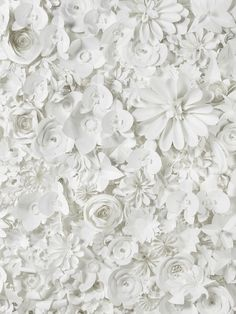 Sabrina Transiskus paper artist - her clients have included Lancome and Louis Vuitton Large Paper Flowers, Paper Flower Wall, Paper Flower Backdrop, Diy Flowers, Diy Paper, Paper Crafts, Festa Party, Paper Artist, Event Decor