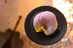 camellia wagashi :)