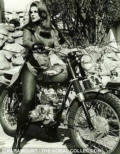Resultados da Pesquisa de imagens do Google para http://cdnimg.visualizeus.com/thumbs/3c/cf/biker,girl,motorcycles,photography,triumph,vintage-3ccf38f555ba3e0f3d271bd35380e9dd_h.jpg