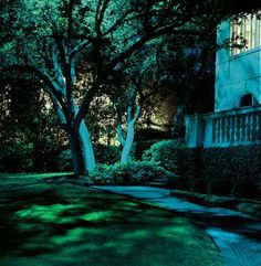 """Chandelier Installation Houston TX   Up light shrubbery, trees, and buildings withhidden """"well lights"""" and ..."""