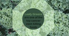 Cancer Killing Foods