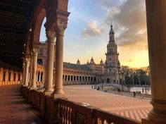 """#ispyapi #repost @superflyskyes """"I still can't believe that it's over. Thank you Sevilla for being everything I could have asked for and more. I'll be back! Oh and be ready for Sevilla spam as I go through my inevitable withdrawals."""" #Seville #Spain #studyabroad #ispyapi"""