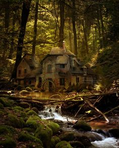Magical forest cottage