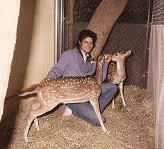 MICHAEL ALWAYS LOVED ANIMALS.
