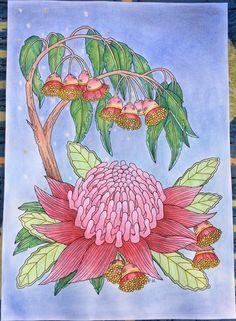 Kleurplaat getekend door (drawing by) Peta Hewitt - Colored by Heleen Keizer