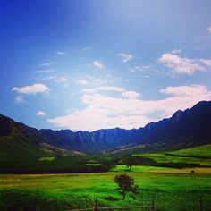 Springtime valleys on Maui.