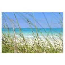 Tropical Beach And Grass Poster $18 32 x 21, cut in half