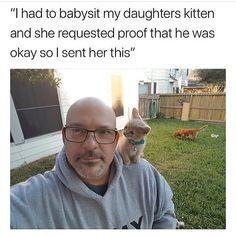 New meme compilation (cat memes,dog memes,pets memes,animal memes) Funny Animal Memes, Cute Funny Animals, Cute Baby Animals, Cat Memes, Funny Cute, Funny Memes, Doja Cat, Funny Animal Pictures, Funny Cat Pics