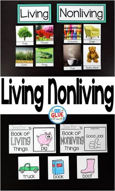 Engage your students in exciting science lessons about living and nonliving things. This science lesson is perfect for science centers in Kindergarten, First Grade, and Second Grade classrooms and packed full of fun science activities. This document allow Science Lesson Plans, Science Curriculum, Preschool Science, Elementary Science, Science Classroom, Science Lessons, Teaching Science, Science For Kids, Life Science