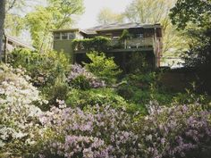 Does your dream home happen to have a steep slope for a back yard? Never fear, you can still give that hilly backyard a beautiful landscaping treatment like this one. The gorgeous yard features features a path that winds through groves of 'Knock Out' roses, butterfly bushes, azaleas and areas of visual interest, from a koi pond to a bird bath, along the way.