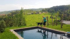 Pures Leben: Weinberg Ferienhaus-Idylle mit Hund Glamping, Hotels, Sauna, Freundlich, Golf Courses, Mountains, Outdoor Decor, Nature, Travel
