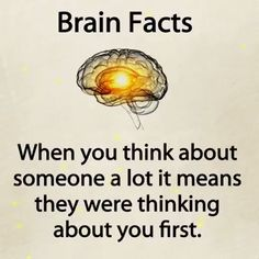 Brain Facts Beautiful Quotes and views Psychology Facts About Love, Psychology Says, Psychology Quotes, Psychology Facts Dreams, Color Psychology, True Interesting Facts, Interesting Facts About World, Intresting Facts, Awesome Facts