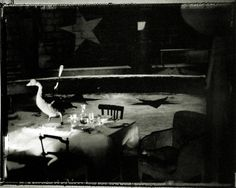 Sarah Moon, In the middle of a laid table. She sees a goose, a grey goose, a fork planted in its chest. The cutlery is set for the whole troop, the napkin flies, glasses shine, the music plays through the loudspeakers, like in better days..., 2000