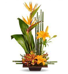 Exotic Grace Arrangement: Tropical Flowers - A tropical vision ...
