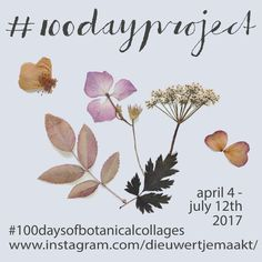 100 days of botanical collages