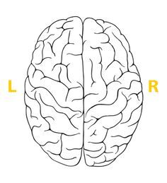 Which side of your brain is more dominant? Left brain or Right Brain? Take the test