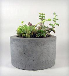 Concrete plant pots uk tutorial how to make succulent shares small planters, Diy Concrete Planters, Diy Planters, Planter Pots, Terrarium, Urban Cottage, Little Plants, Garden Pots, Indoor Plants, Exterior