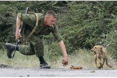 A Russian soldier plays with a stray dog. Animal protection activists are aghast at a proposal to send the Russian capital's stray dogs to an isolation facility outside the city.