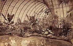 Bild: Wintergarten Ludwigs II.