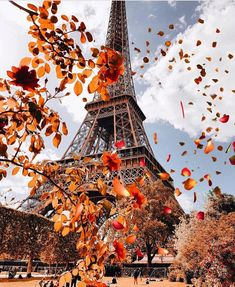 Paris city tour with eiffel tower and seine river cruise, English speaking tours in paris. Discover wonderful Paris in half a day. Eiffel Tower Photography, Paris Photography, Autumn Photography, Beautiful Paris, I Love Paris, Paris In Autumn, Paris Pictures, Fall Wallpaper, Paris Wallpaper Iphone