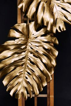 For an opulent summer party consider painting monstera plant leaves gold. This keeps the seasonal silhouette but adds a luxurious feeling Black And Gold Aesthetic, Minimalist Wallpaper, California Art, Eye Photography, Wall Art Pictures, Blush And Gold, Black Gold, Animes Wallpapers, Light In The Dark