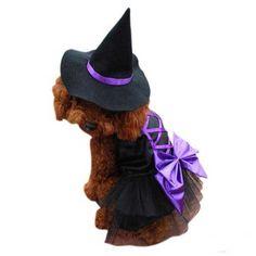 www.perronality.com  Disfraces para perros