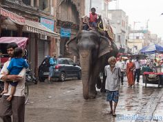 Special taxi élephant New Delhi..India | Flickr - Photo Sharing!