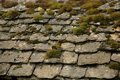 Stone roof tiles with moss