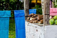Veja 1.769 fotos de Expedicao Pará no Flickr.