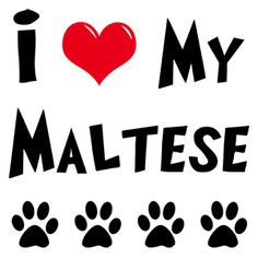 I-Love-My-Maltese.png 300×300 képpont