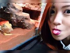 Selfie with the dragon. #beardeddragon #selfie #pet #terrarium