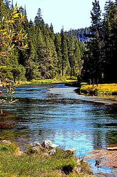 Lower Truckee River, Nevada. There was a time you could fish the Truckee right in Reno between the Casinos. The water was clear and the trout were plentiful. Many a man rolled up his pants and the sleeves of his business clothes to throw a fly or two. It was a wonderful time. I loved the cold water on my legs and feet.