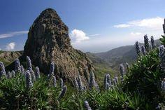 Excursión visita a la Gomera desde Tenerife   64€/pers. Travelsportcanarias