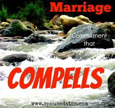 Marriage: A Commitment that Compells Intimate Marriage, Marriage Advice, Love You, My Love, Mr Mrs, Dating, How To Remove, Romance, Positivity
