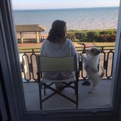 The sea view at the French style apartment with Ned the lucas terrier St Leonard's on sea near Hastings- summer 2016