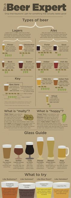 Beer Guide, types of beer, become a beer expert. Ever stand in the liquor store wondering what new beer to try yet thinking whether you will like it?