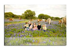 Bluebonnets, Longhorns, and Quintuplets--what could be better? - Capturing Joy with Kristen Duke