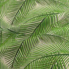 Cotton Twill Fabric, Linen Fabric, Cotton Linen, Fabric Suppliers, Printed Linen, Printing On Fabric, Plant Leaves, Prints, Cotton Sheets
