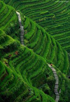 Stairway to Heaven, Longsheng