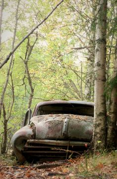 Rusty abandoned car in forest. Photo by Jonas W. Source Flickr.com #mustangvintagecars