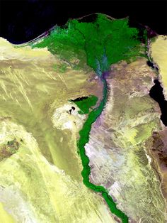 The agriculture cover of North & middle Egypt