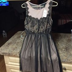 BRAND NEW   BLACK  CREAM BEAUTIFUL DRESS BEAUTIFUL DRESS WITH LACE ON TOP AND PLEATED ON BOTTOM ,GREAT FOR GRADUATION PARTIES,ETC Forever 21 Dresses Midi