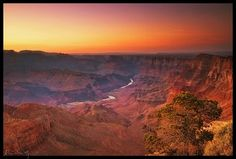 grand canyon pictures - Google Search