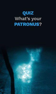 My patronus is a stag! Ginny Weasley, Harry Potter Love, Harry Potter World, James Potter, Harry Potter Quiz Patronus, Draco Malfoy, Ravenclaw, Jokes, Movies