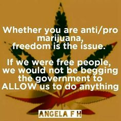 Whether you are anti/pro marijuana, freedom is the issue. If we were free people, we would not be begging the government to ALLOW us to do anything. Molon Labe, Drugs, Herbalism, The Cure, Freedom, Wisdom, Peace, Fibromyalgia, Hemp
