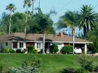 California Lawn Alternatives- Drought Tolerant Grass and Groundcovers Types Of Grass, Types Of Soil, Types Of Plants, Drought Tolerant Grass, Tall Fescue Grass, Fake Lawn, Seed Germination, Small White Flowers, Soil Improvement